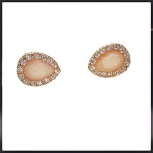 Francesca's Gem & Rhinestone Earrings